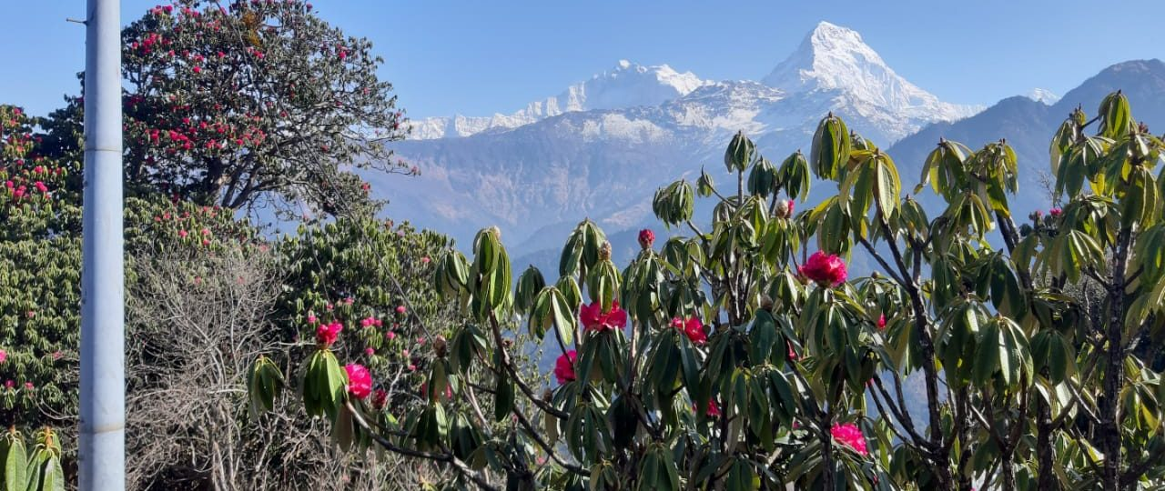 How to spend 7 days in Nepal?